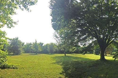 Veduta del parco privato di Barchessa Rossetti